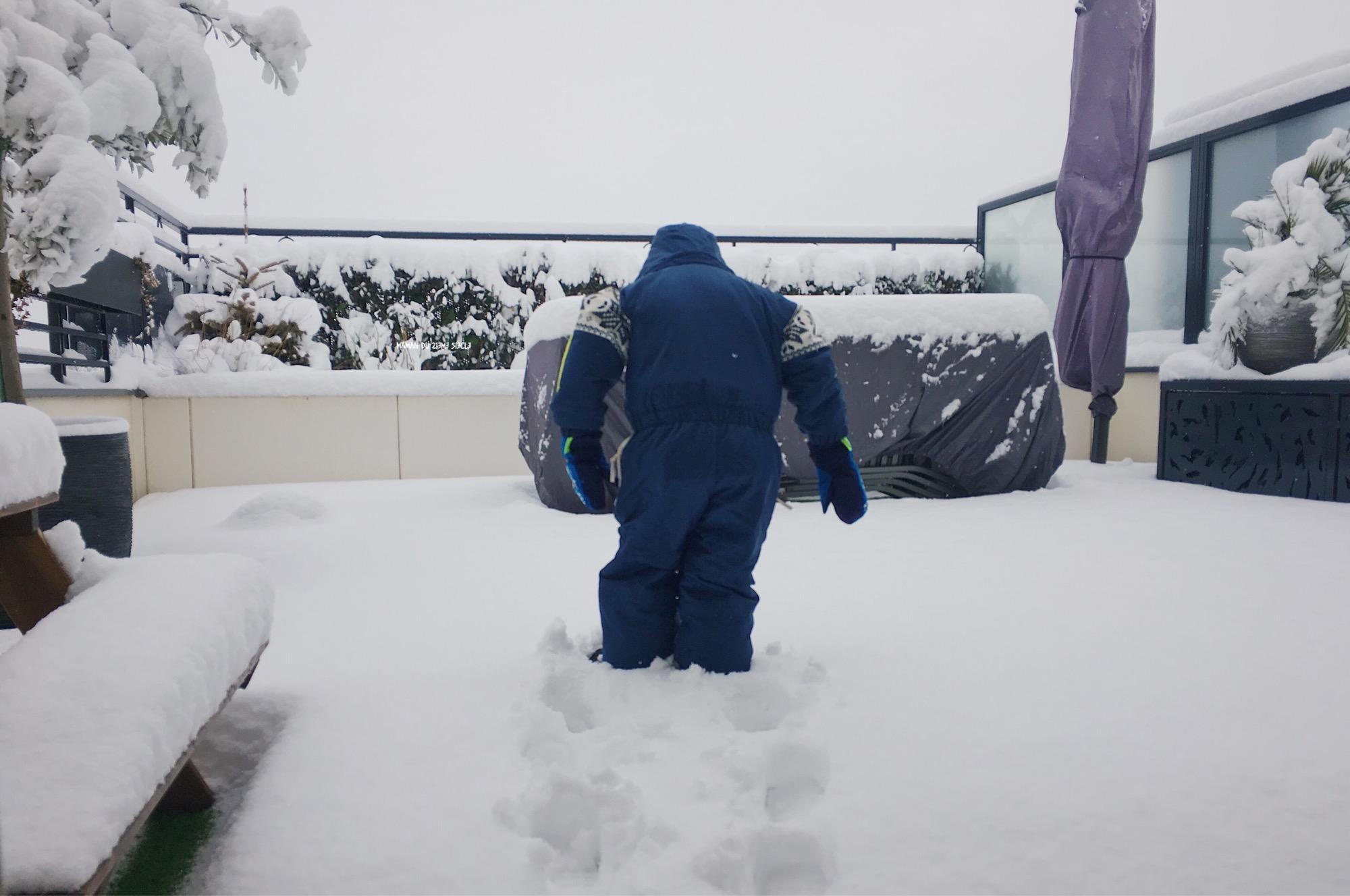 loulou-dans-la-neige