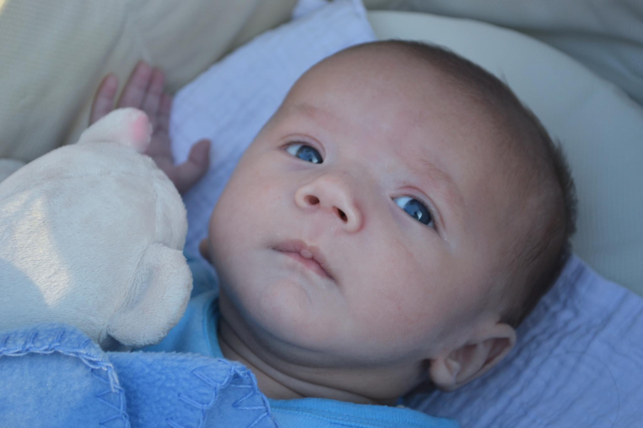 bebe-prema